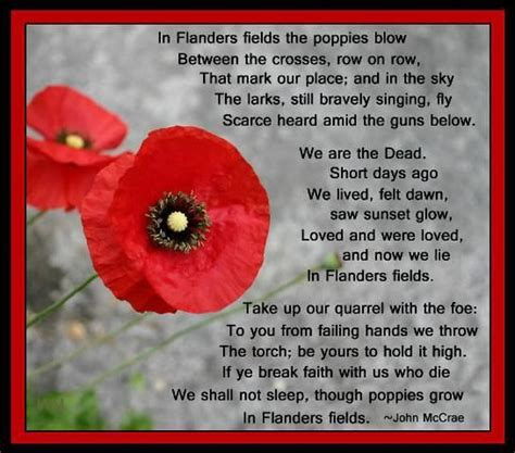 poppy pappy day lyrics 43 best remembrance day images on pinterest remembrance