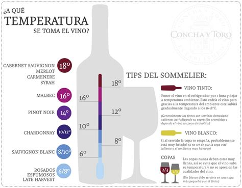 qu vino con este 191 cu 225 l es la temperatura ideal para servir un vino 191 cu 225 l es la temperatura ideal para servir un