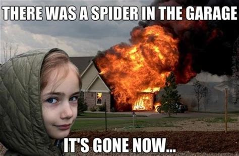 Killing Spiders Meme - burn the house down to kill the spider dump a day