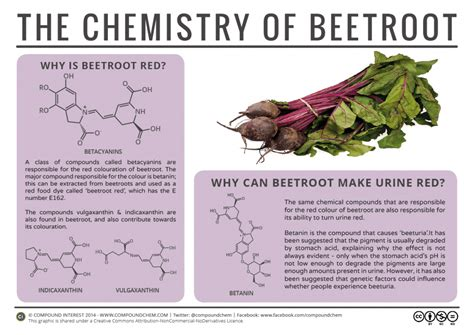 compound interest why can beetroot turn urine the