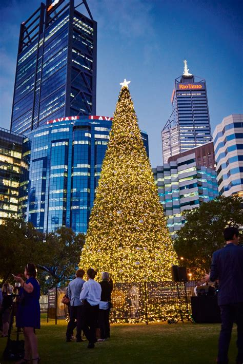 elizabeth quay wa s biggest xmas tree shines for lights