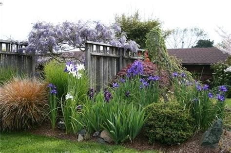 Landscape Ideas To Hide A Fence Hiding The Propane Tank Inconspicuous Propane