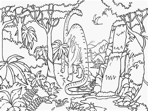 free coloring pages of tropical rain forest