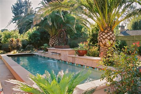 Palm tree pool in pool tropical with palm trees canary island palm