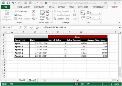 excel 2010 tutorial notes using a picture to watch cell values in other sheets in