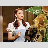 Dorothy Wizard ...