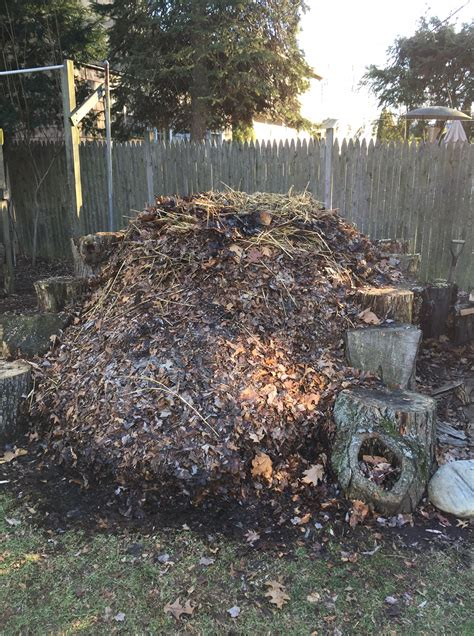 backyard compost pile my pile marking territory my pile