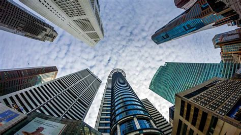 Mba Schools In Singapore by The Business Solution Deforestation In Singapore