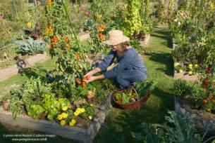 astuce pour un beau jardin potager astuces bricolage