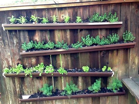 herbs on wall 17 best images about herb wall on pinterest gardens