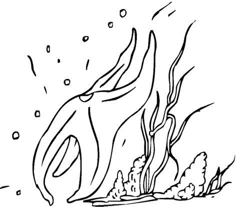 ocean floor coloring pages