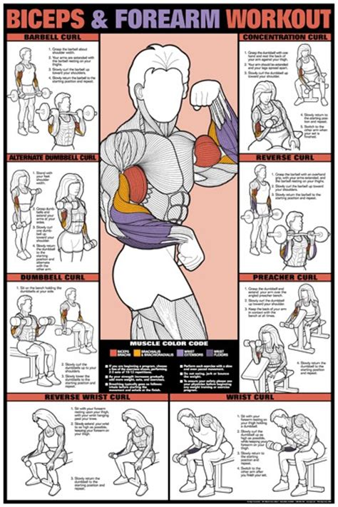 health and fitness target workout your areas