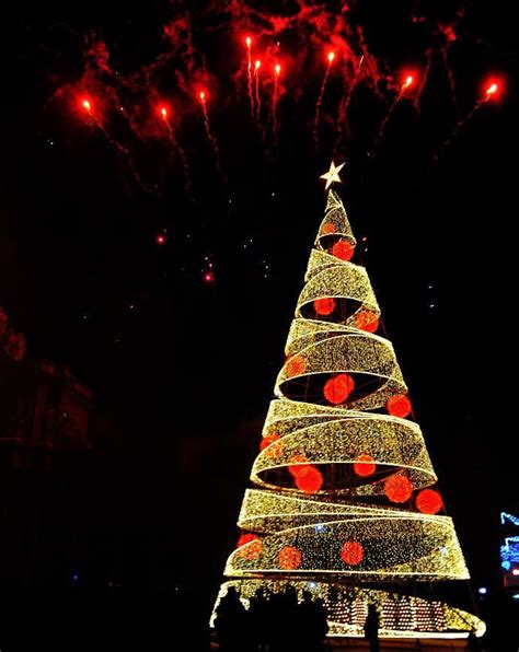 top 10 best christmas trees places to see in your lifetime