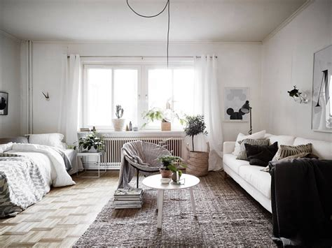 studio apartment rugs how to divide a studio apartment gravity home