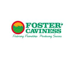 Foster Mba Values by Project Partners Nc Growing Together