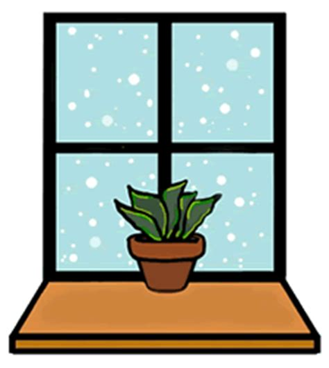 north window plants north south east or west laidback gardener