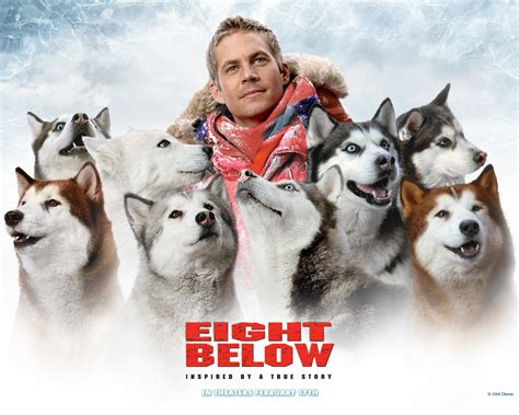 cast of snow dogs the awesome reason paul walker appeared in eight below fact fiend