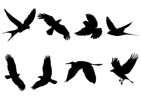 silhouette vector free flying bird silhouette vector download free vector