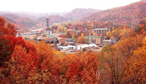 tennessee colors fall colors gatlinburg tn can you imagine the great smoky