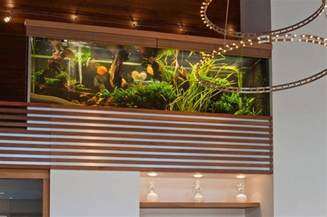 aquarium design group llc villa with aquarium by centric design group