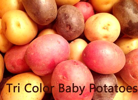 tri color potatoes easy oven veggies