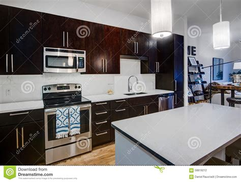 cuisine d appartement cuisine moderne d appartement photo stock image 58819212