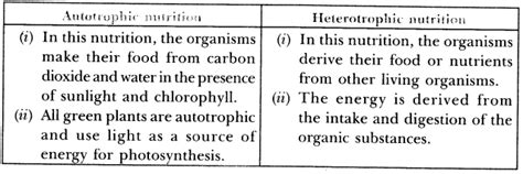 important question for class 10 science life processes