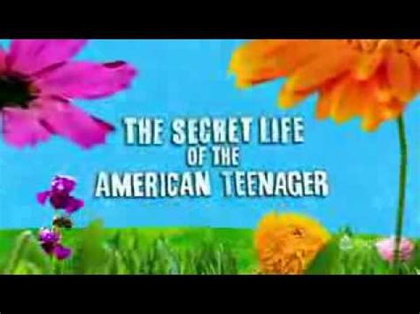 The Great American Theme Song The Secret Of The American Theme Song