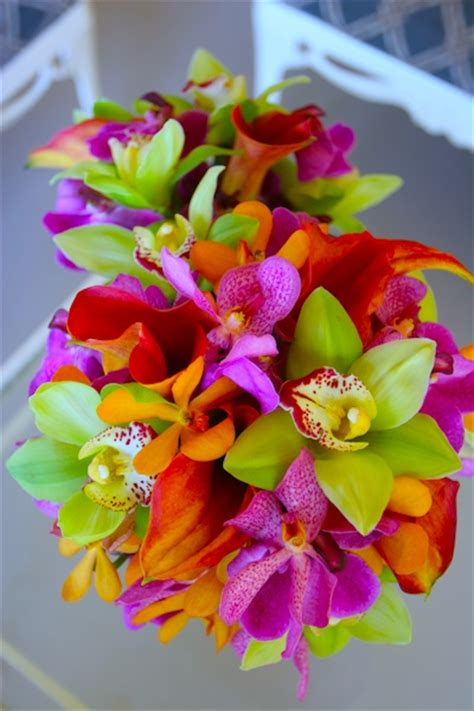 Tropical Wedding Flowers by Bright Tropical Wedding Flowers Flowers
