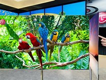 Image result for Biggest OLED TV. Size: 211 x 160. Source: www.theverge.com