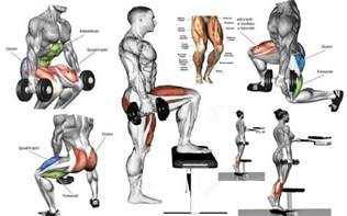 great legs routine using dumbbells valentin bosioc