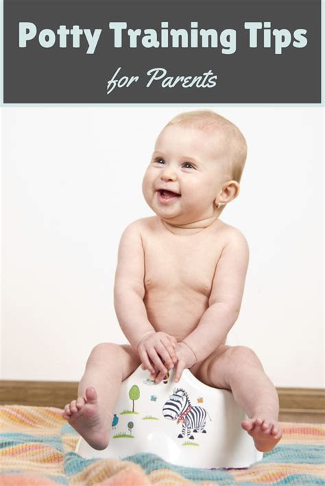 7 Tips On Potty Your Child potty tips for parents annmarie