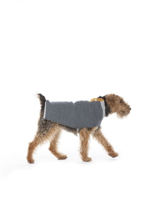 flannels for dogs 17 best images about it s raining dogs not cats clothing on coats