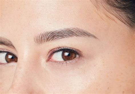 how to soften hair on eyebrows and get them to lay down browhaus brow resurrection semi permanent eyebrows