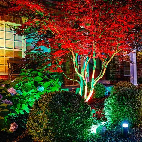 Marvelous Colored Led Christmas Lights #8: Led-landscape-light-red-tree-front-house.jpg