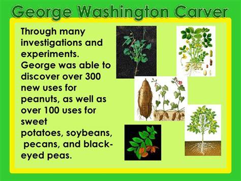 biography of george washington carver timeline george washington carver inventions list www pixshark