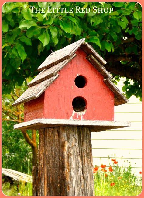 birdhouse with 2 holes gardens pinterest the o jays
