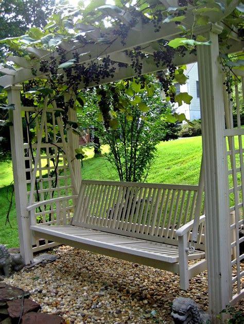Treille Jardin by Treille Vignes Et Avec Balancelle Faire Une Pergola Ou