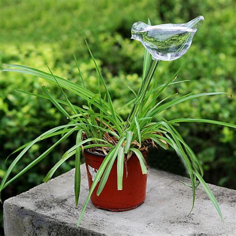 water feeder bird shaped glass plant flower watering spike stake water feeder alex nld