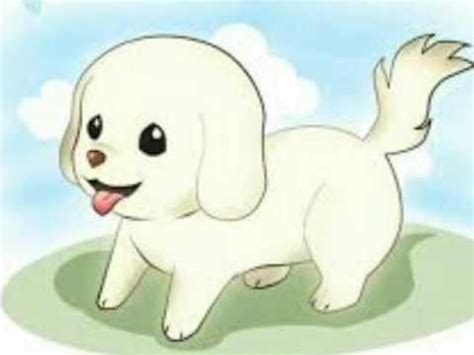 imagenes de perritos kawaii perros animes kawaiis youtube