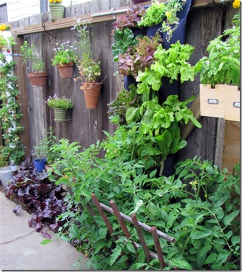 clever ways to add space with creative vertical gardens