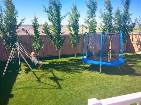 canadian tire swing sets weekend reading backyard playground edition financial