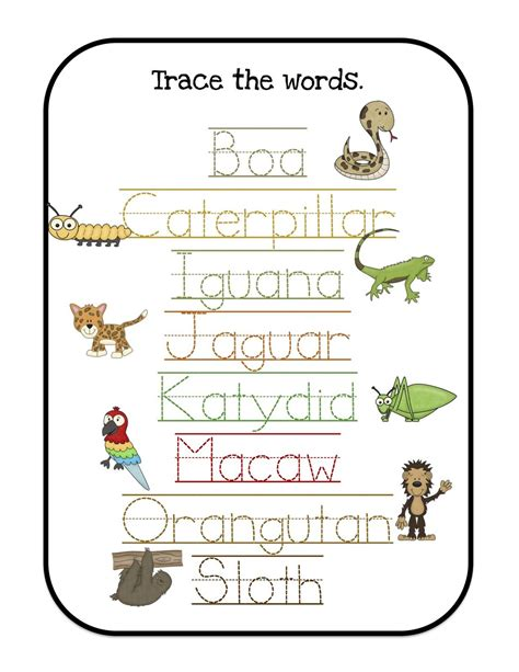 tons of preschool printables let s learn rainforest