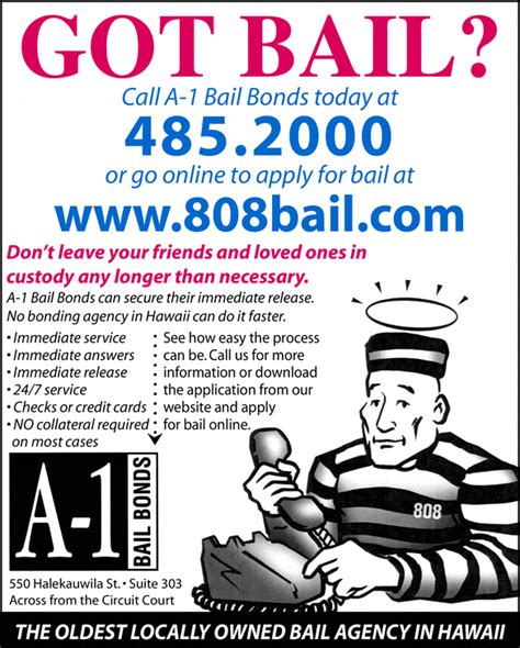 the bail book a comprehensive look at bail in america s criminal justice system books yellowbook the local yellow pages directory