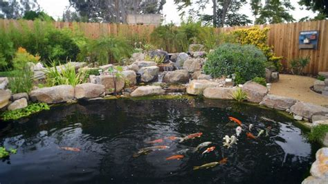 how to build a fish pond in your backyard how to build a koi pond diy tips