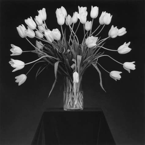 why we can t forget robert mapplethorpe out magazine robert mapplethorpe