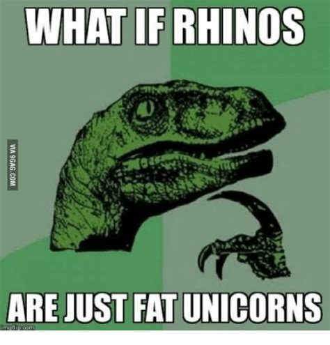 What If Memes - 25 best memes about fat unicorn rhino fat unicorn rhino