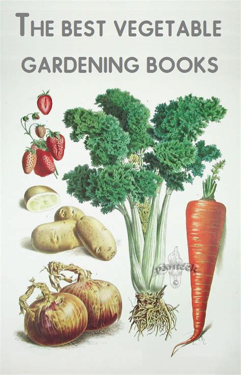 the best vegetable gardening books that should belong on