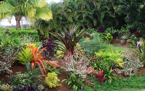 Tropical Flower Garden Design Ideas Tropical Flower Garden