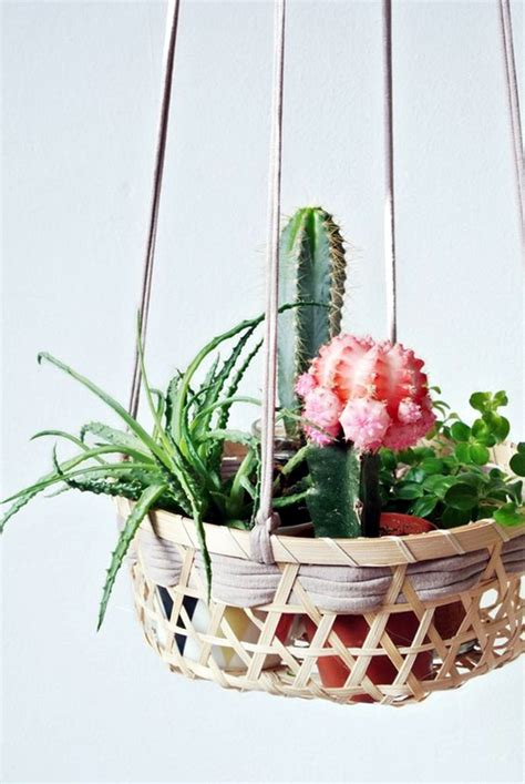 hanging plant ideas 40 elegant diy hanging planter ideas for indoors bored art